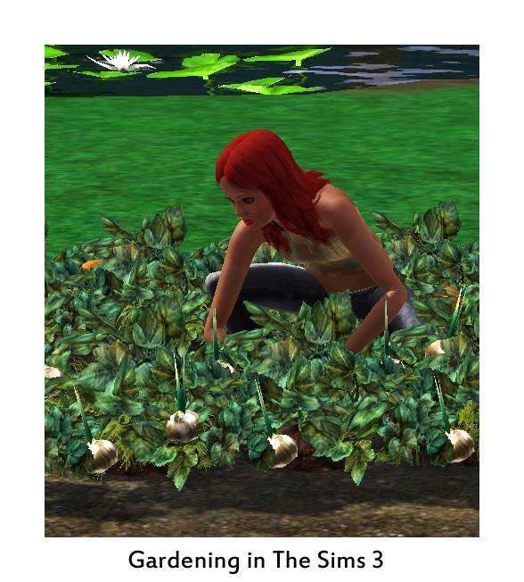 TS3 garden
